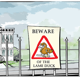 beware of the lame duck