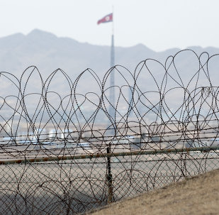 A North Korean flag behind the barbed wire of the Demilitarized Zone (DMZS) in the Joint Security Area near Panmunjom on the border between North and South Korea