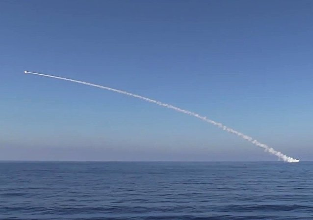 Kalibr cruise missile at ISIS facilities. (File)